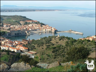 the harbour at Collioure