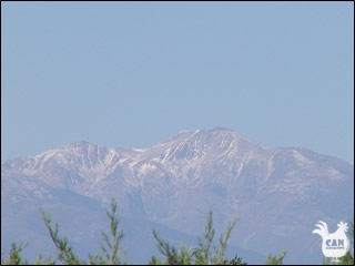 Canigou from the plains of Roussillon